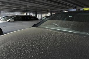 黄砂で汚れた車の素材 [FYI00026130]
