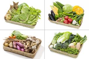 四季折々の野菜盛合せの写真素材 [FYI00026190]