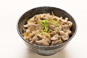 牛丼の写真素材 [FYI00026201]