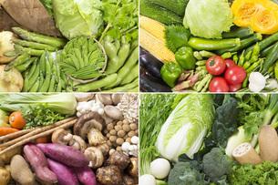 四季折々の野菜の写真素材 [FYI00026217]
