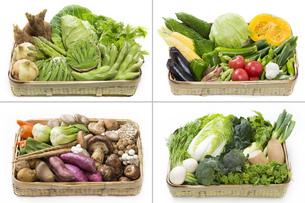 四季折々の野菜盛合せの写真素材 [FYI00026236]