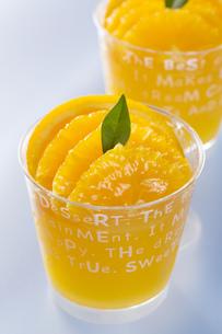 オレンジのカップゼリーの写真素材 [FYI00026621]