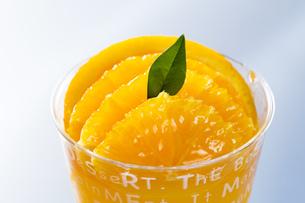 オレンジのカップゼリーの写真素材 [FYI00026679]
