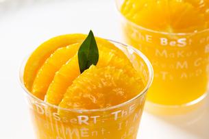 オレンジのカップゼリーの写真素材 [FYI00026682]