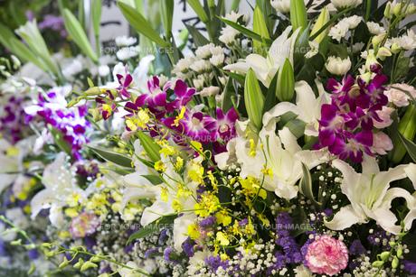 お葬式の献花の写真素材 [FYI00026790]
