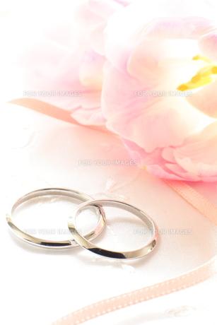 結婚指輪の写真素材 [FYI00026908]