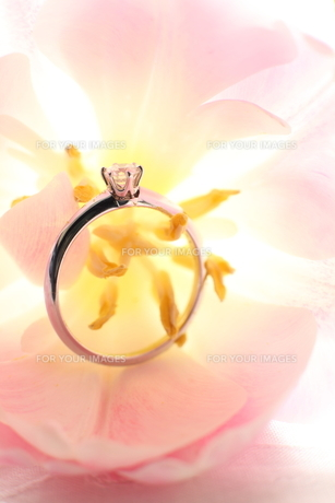 ダイヤモンドの婚約指輪の素材 [FYI00026914]
