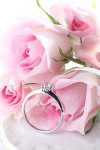 薔薇とダイヤモンドの素材 [FYI00027029]