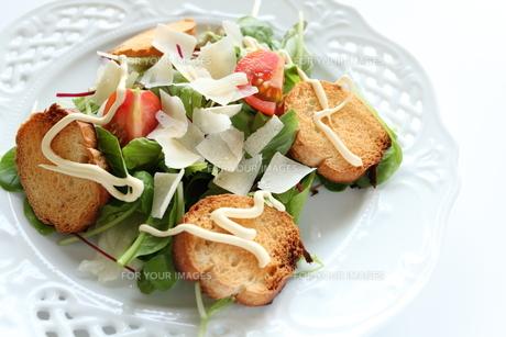 野菜サラダの写真素材 [FYI00027211]