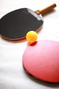 卓球のラケットの写真素材 [FYI00027258]