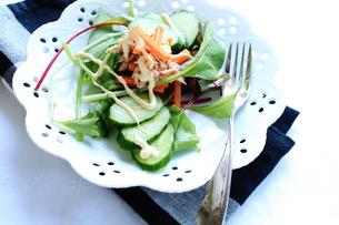 野菜とツナのサラダの写真素材 [FYI00027453]