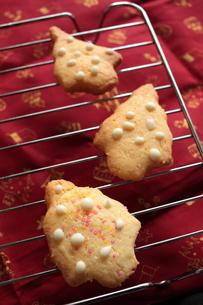 クリスマスクッキーの調理シーンの写真素材 [FYI00027615]
