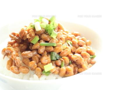 納豆ご飯の写真素材 [FYI00028007]