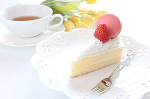 春のマカロンのショートケーキの写真素材 [FYI00028032]