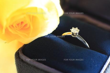 婚約指輪の素材 [FYI00028072]