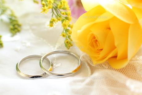 結婚指輪の写真素材 [FYI00028084]
