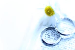 結婚指輪の写真素材 [FYI00028188]