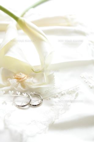 結婚指輪と初夏のカラーの写真素材 [FYI00028190]