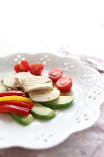 鶏肉のサラダの素材 [FYI00028313]