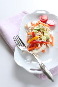 鶏肉のサラダの素材 [FYI00028318]