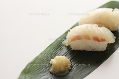鯛のお寿司の素材 [FYI00028599]