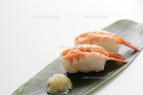 エビ寿司の素材 [FYI00028615]