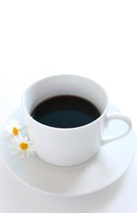 コーヒーの写真素材 [FYI00028719]