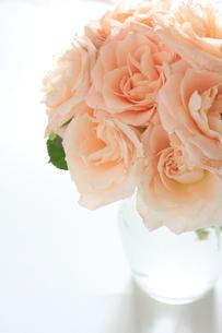 バラのフラワーアレンジの写真素材 [FYI00029250]
