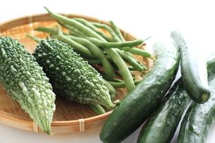 自家栽培の夏野菜の写真素材 [FYI00029339]