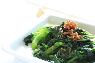 青野菜と中華らー油XOソースの炒め物の素材 [FYI00029381]