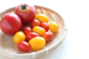 自家製倍の多種類トマトの写真素材 [FYI00029545]