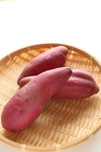 秋の味覚の薩摩芋の写真素材 [FYI00030004]