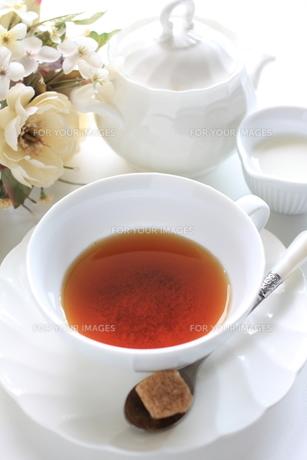 紅茶タイムの素材 [FYI00030033]