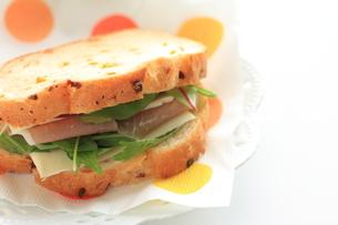生ハムとチーズのサンドイッチの素材 [FYI00030084]