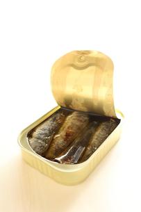 鰯の缶詰の写真素材 [FYI00030565]