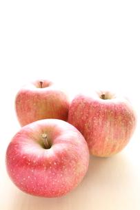 青森県産の蜜リンゴの写真素材 [FYI00030681]