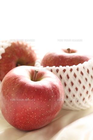 リンゴの写真素材 [FYI00030693]