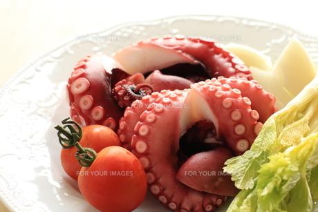 新鮮なタコと野菜の素材 [FYI00030923]