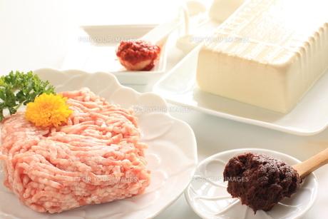 麻婆豆腐の写真素材 [FYI00031142]