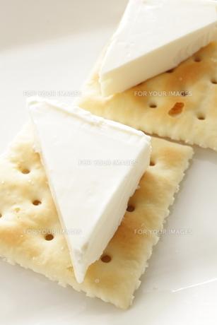 クリームチーズの写真素材 [FYI00031639]