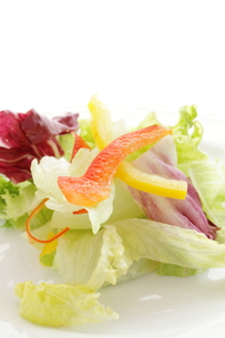 サラダ野菜の写真素材 [FYI00032467]