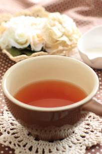紅茶の写真素材 [FYI00032721]