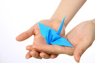 折鶴を両手で持つの写真素材 [FYI00033356]
