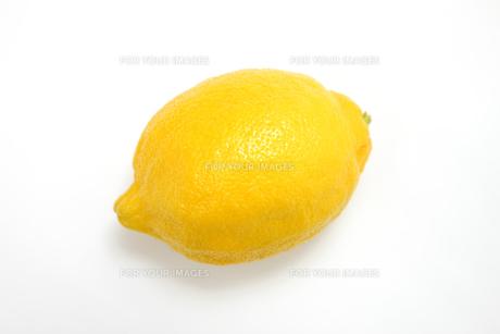 レモンの写真素材 [FYI00033540]