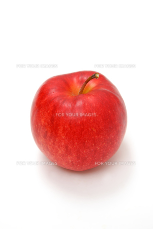 リンゴの写真素材 [FYI00033555]