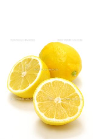 レモンの写真素材 [FYI00033625]