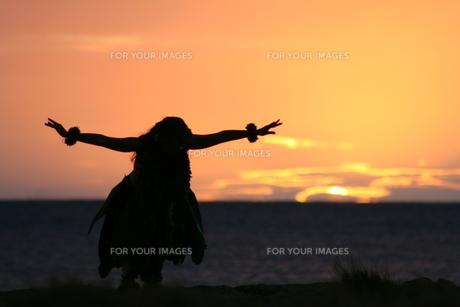 日没のフラダンスの写真素材 [FYI00033679]