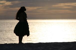 ビーチのフラダンサーの写真素材 [FYI00033685]