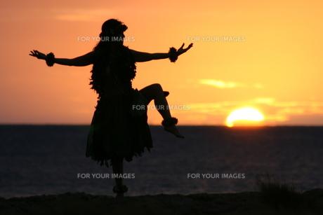 日没のフラダンスの写真素材 [FYI00033703]