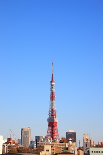 東京タワーの写真素材 [FYI00034420]